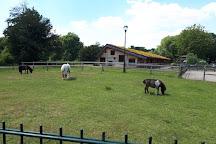 Kinderboerderij De Elzenhoek, Oss, The Netherlands