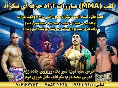 باشگاه ورزشی مبارزات آزاد (MMA) قهرمانان نیکزاد