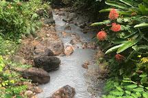 Diamond Falls Botanical Gardens, Soufriere, St. Lucia