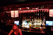 Zebra Lounge, Chicago, United States