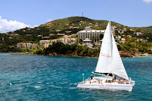 The VI Cat, Charlotte Amalie, U.S. Virgin Islands