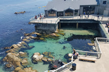 Monterey Bay Aquarium, Monterey, United States