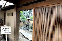 Shunkaen Bonsai Museum, Edogawa, Japan