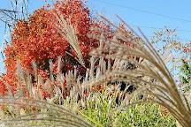 OPPD Arboretum, Omaha, United States