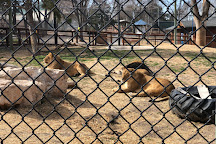Amarillo Zoo, Amarillo, United States