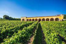 Azienda Agricola Monte Tondo, Soave, Italy