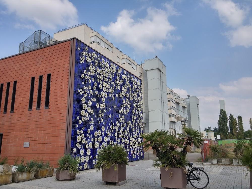 Ospedale di Imola S. Maria della Scaletta