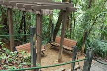 Hemmant Trail, Bukit Fraser, Malaysia