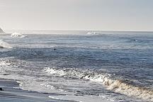 Waddell Beach, Santa Cruz, United States