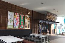 Hitachi Osakana Center, Hitachi, Japan
