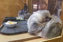 Lupa zoo, Ludlow, United States