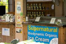 Floravilla Ice Cream Factory, Daintree, Australia