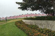 Pepperdine University, Malibu, United States