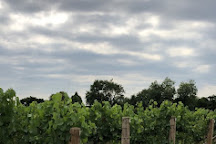 Nutbourne Vineyards, Nutbourne, United Kingdom