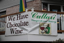 Cullari Vineyards and Winery, Hershey, United States