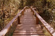 Parque Nacional El Palmar, Colon, Argentina