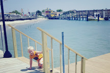 Sea Rocket, Ocean City, United States