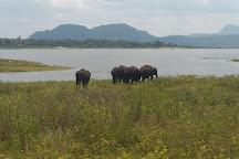 Maduru Oya National Park, Aralaganwila, Sri Lanka