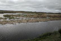 Cameron Prairie National Wildlife Refuge, Louisiana, United States