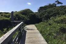Kiawah Island, Kiawah Island, United States