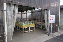 Akigawa Farmers Center, Akiruno, Japan