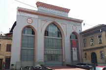 Arca, Vercelli, Italy