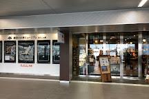 Ponshukan Niigata-station South, Niigata, Japan