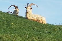 Great Orme Family Golf, Llandudno, United Kingdom