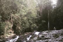 Bangalore Falls, Upper Orara, Australia
