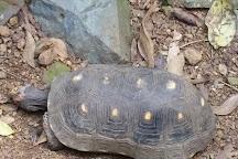 Phantasea Tropical Botanical Garden, St. Thomas, U.S. Virgin Islands