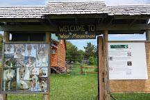 Wolf Mountain Nature Center, Smyrna, United States