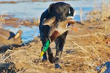 Three Rivers Duck Club, Waldenburg, United States