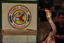 Cobra Show, Damnoen Saduak, Thailand
