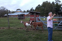 Goat Lady Dairy, Climax, United States