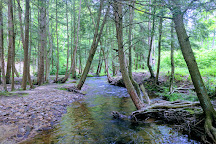 Allegheny National Forest, Pennsylvania, United States