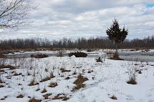 Lemoine Point Conservation Area, Kingston, Canada
