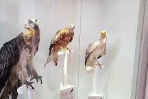 Le Museum D'histoire Naturelle de la Plaine d'Ansot, Bayonne, France
