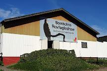 Bornholms Rovfugleshow, Roenne, Denmark