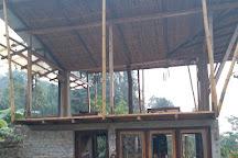 Petrichor Farms, Darjeeling, India