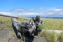 Damon Point, Ocean Shores, United States