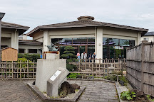 Nishikikoi no Sato, Ojiya, Japan