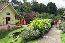 Banana Museum (Le Musee de la Banane), Martinique