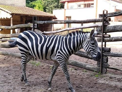 Lithuanian Zoo