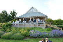 Corey Creek Vineyards, Southold, United States