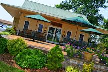 Dennis Vineyards Winery, Albemarle, United States