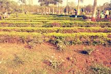 Sneh Rashmi Botanical Garden, Surat, India