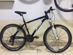 Rueda Bikes 8