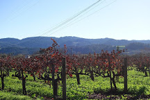 Vincent Arroyo Winery, Calistoga, United States