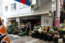 Yokohamabashi Shopping District, Yokohama, Japan