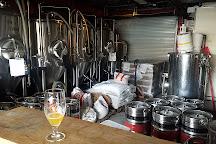 7venth Sun Brewery, Dunedin, United States